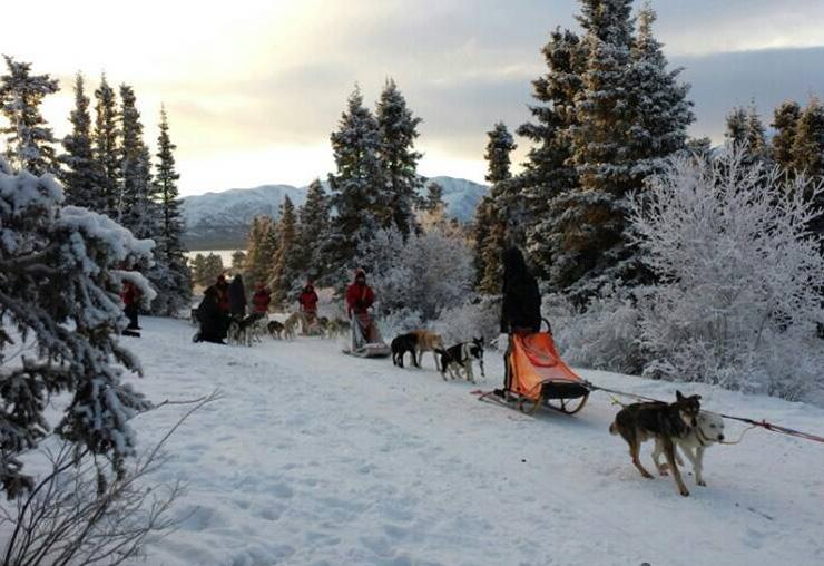 겨울캠프 (WINTER CAMP)